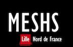 MESHS
